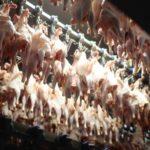 Luftkühlung von Hähnchenhälften